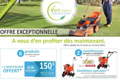 infographiste mailing pour vert import