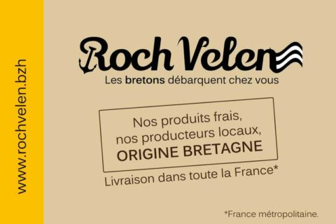 """Création logo et carte de visite """"Roch Velen"""" - Inspire infographiste Freelance à Rennes."""